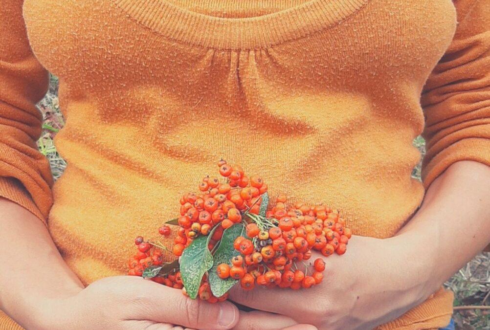 Il nutrimento delle donne. Sostieni il tuo ciclo mestruale al ritmo delle stagioni